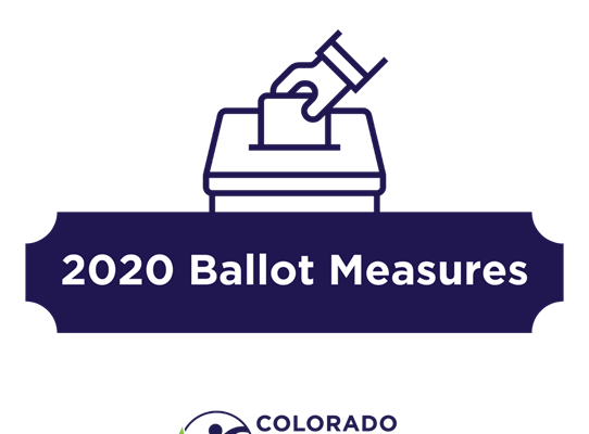 2020 Ballot Measure photo